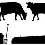 パッケージデザインの牛のシルエット